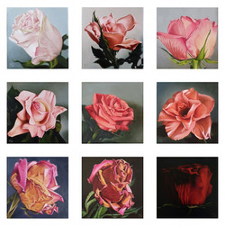 9 small paintings of roses