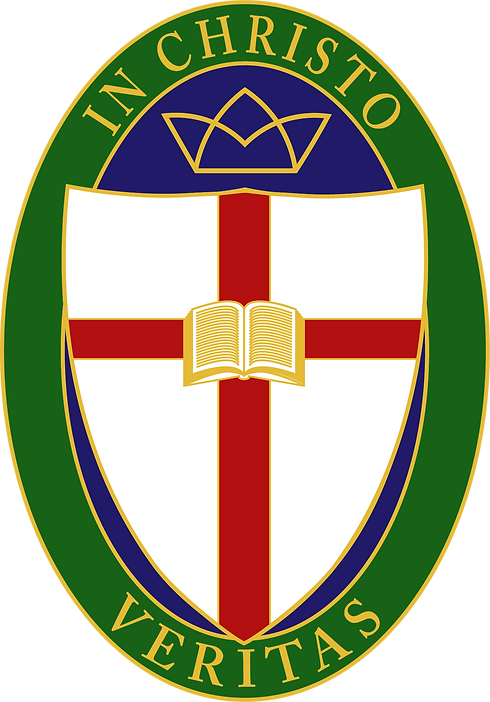 Veritas_Main Logo_XLarge (1).png