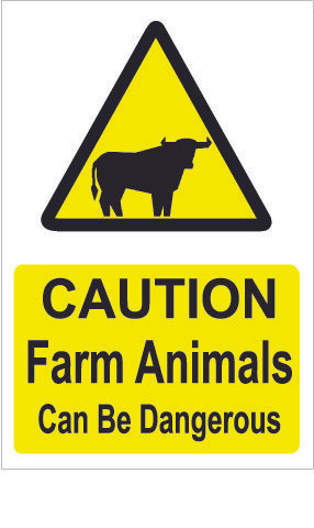 Farm Animals Can Be Dangerous