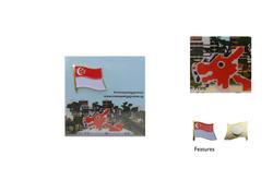 Singapore Flag Pin, OSU
