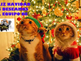 Feliz Navidad a todos los oyentes y seguidores de nuestro programa, esperamos estar junto a vosotros