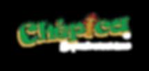 CHEPICA-logo-Transparente.png