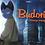 Thumbnail: Budori, l'étrange voyage, un conte écologique (DVD)
