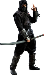 Ninja Courses