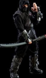 Ninja Parkurlar