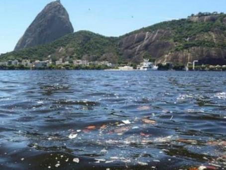 Baía de Guanabara: mais R$ 104 milhões para despoluição
