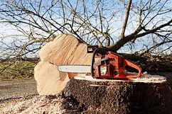 chainsaw-4815949_1920.jpg
