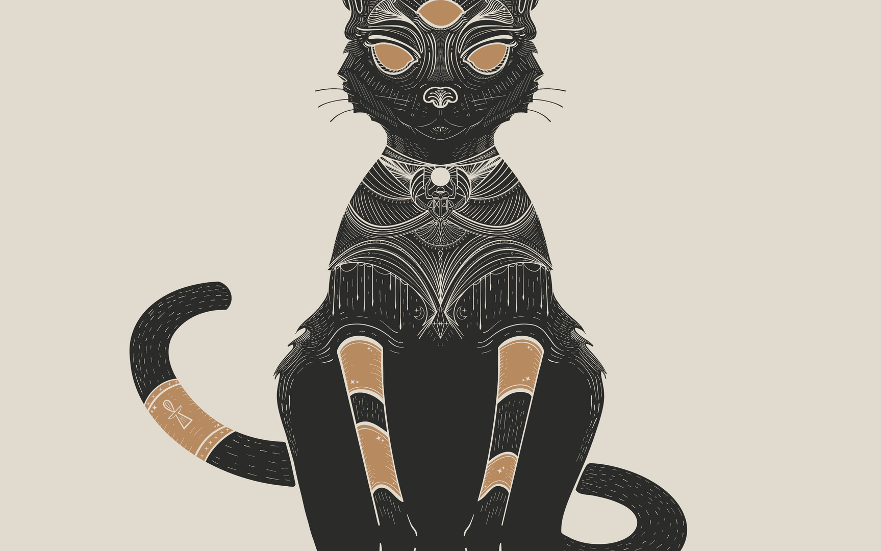 """""""DECO CAT"""""""