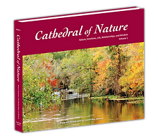 Cathedral-Of-Nature_Volume-1.png