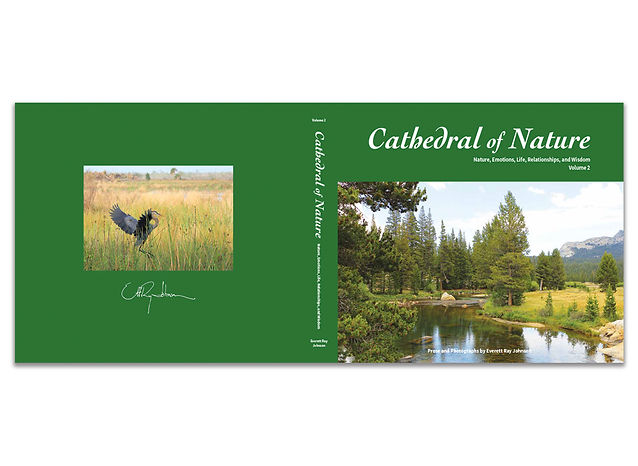 cathedral-of-nature-volume2-CVR.jpg