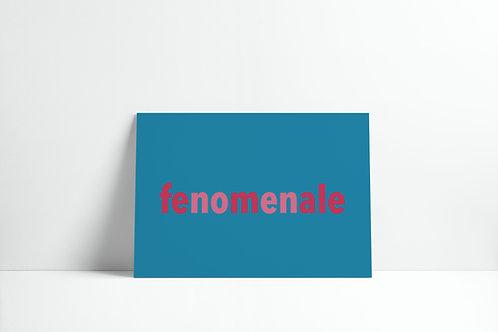 Postkaartje - fenomenale