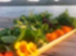 nourriture sur quai.png