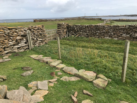Walling at Westness