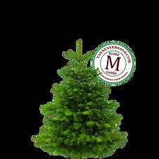 Weihnachtsbaum M.png