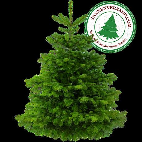 Weihnachtsbaum Natur mit normalen Logo.p