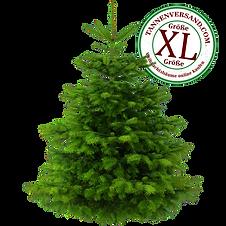 Weihnachtsbaum XL.png