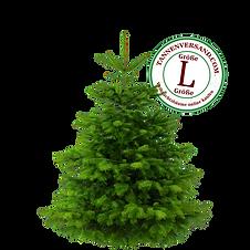 Weihnachtsbaum L.png