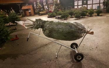 Gallerie Weihnachtsbaumverkauf 11.jpg