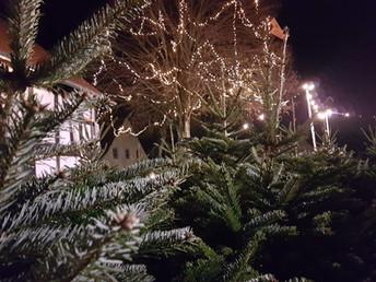 Gallerie Weihnachtsbaumverkauf 9.jpg