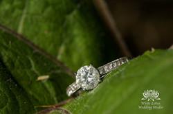 037 - Engagement - Toronto - Summer_
