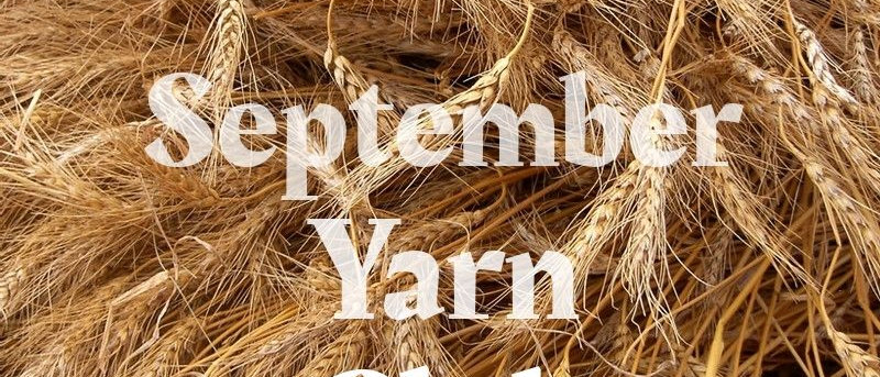 September Yarn Club (revealed)