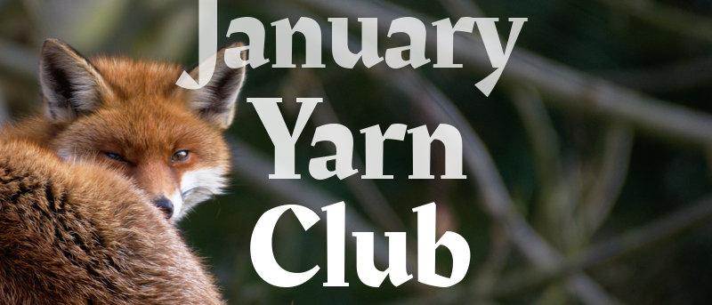 January Yarn Box (revealed)