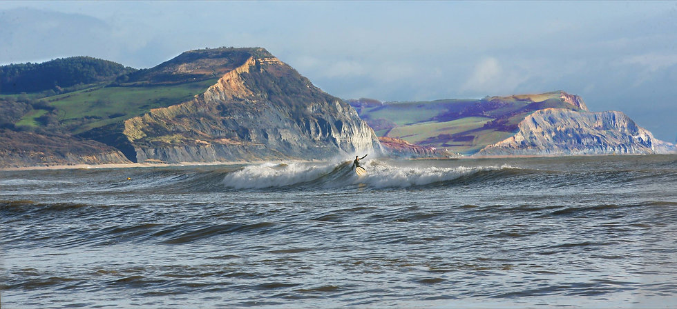 Golden Gap Surfer