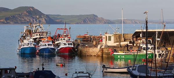 Early Morning Harbour, Lyme Regis.jpg