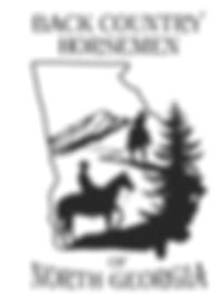 BCHNG 2011 Logo.jpeg