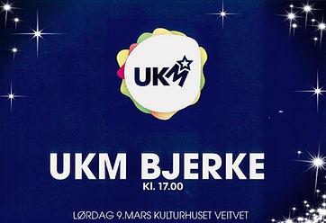 UKM Bjerke 2019.jpg