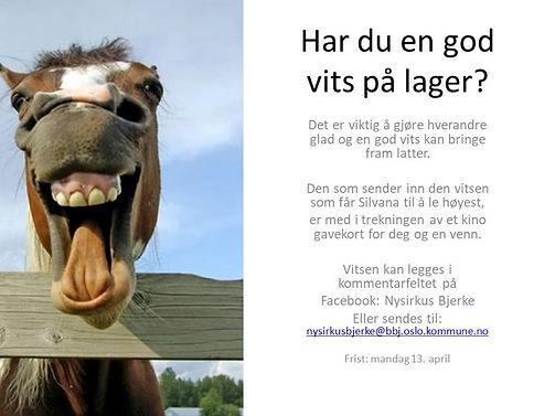 Har_du_en_god_vits_på_lager.jpg