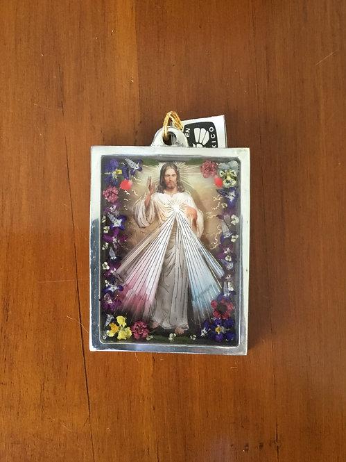 Frame - Divine Mercy