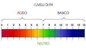 autolavaggio-self-service-la-pecora-bianca-car-wash-iglesias-i-cinque-elementi-di-un-lavaggio-di-qualita'-pH