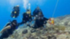 drift-diver_0.jpg