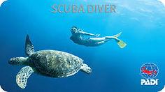 scuba2.jpg
