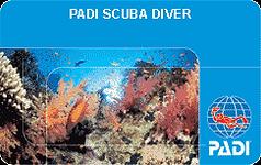 scuba3.png