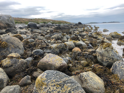 Norway rocky shore