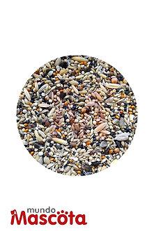 Cardenal cereales alimento Mundo Mascota Moreno