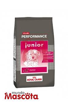 Royal Canin Club Performance cachorro puppy junior Mundo Mascota Moreno