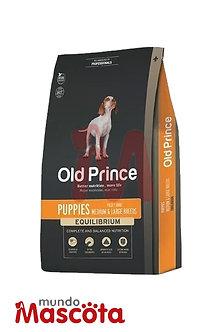 Old Prince Cachorro Mundo Mascota Moreno