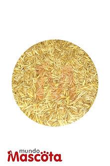 Avena cereales alimento Mundo Mascota Moreno