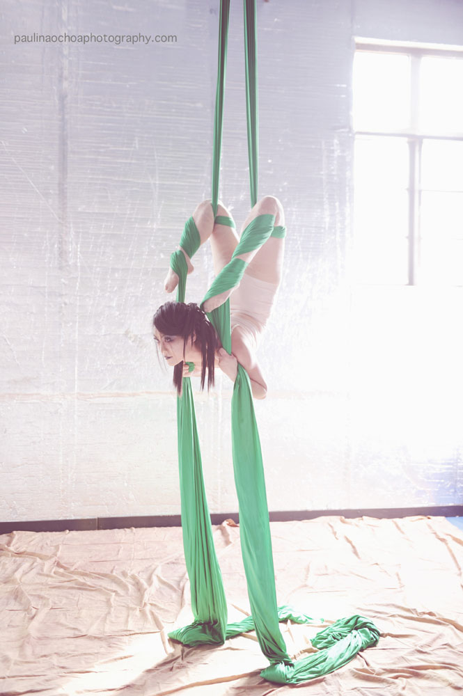 Woman on Silks