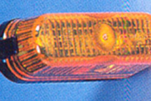 Farolim pisca Dim.: 74 x 26 mm