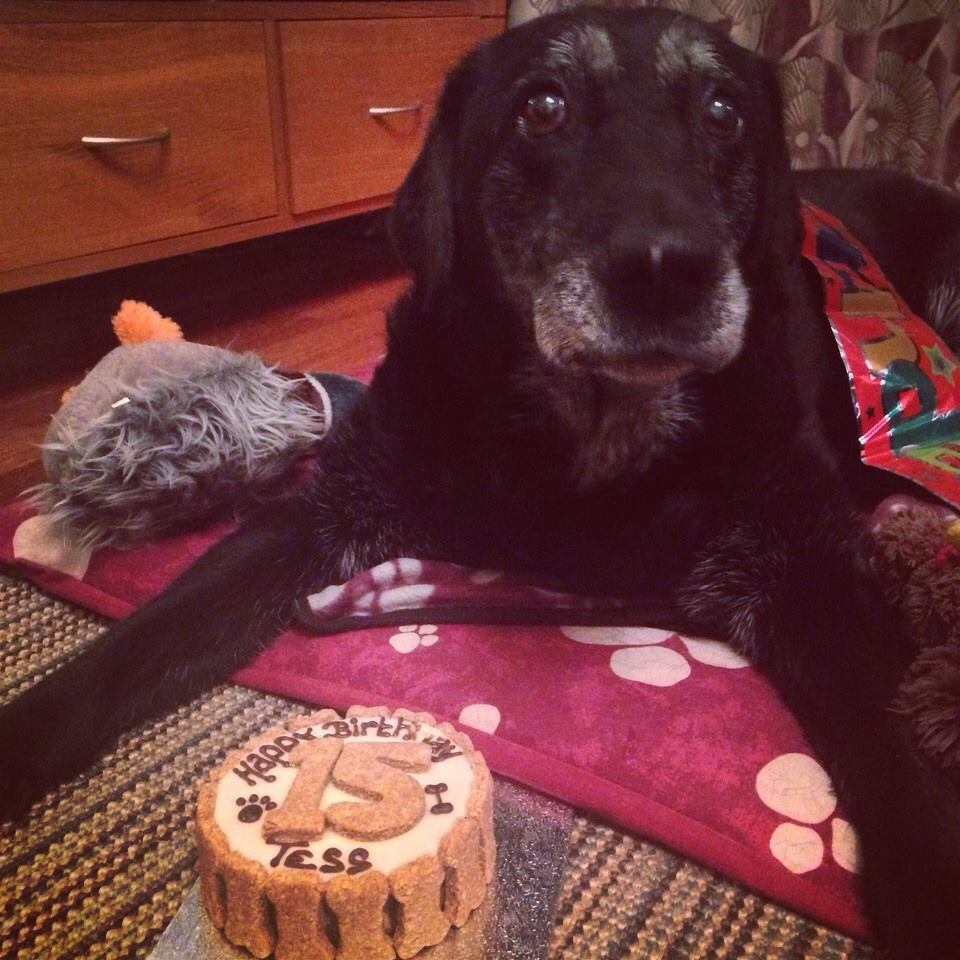Young Tess on her 15th Birthday!