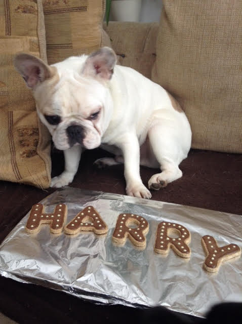 Harry with his name in cookies!