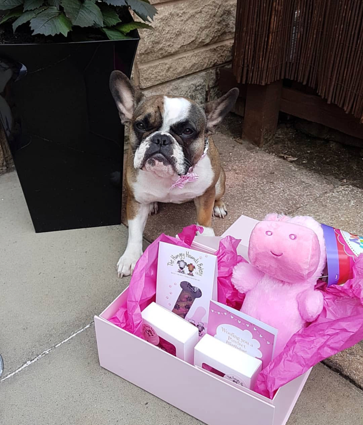 Arla with her 1st Birthday Box