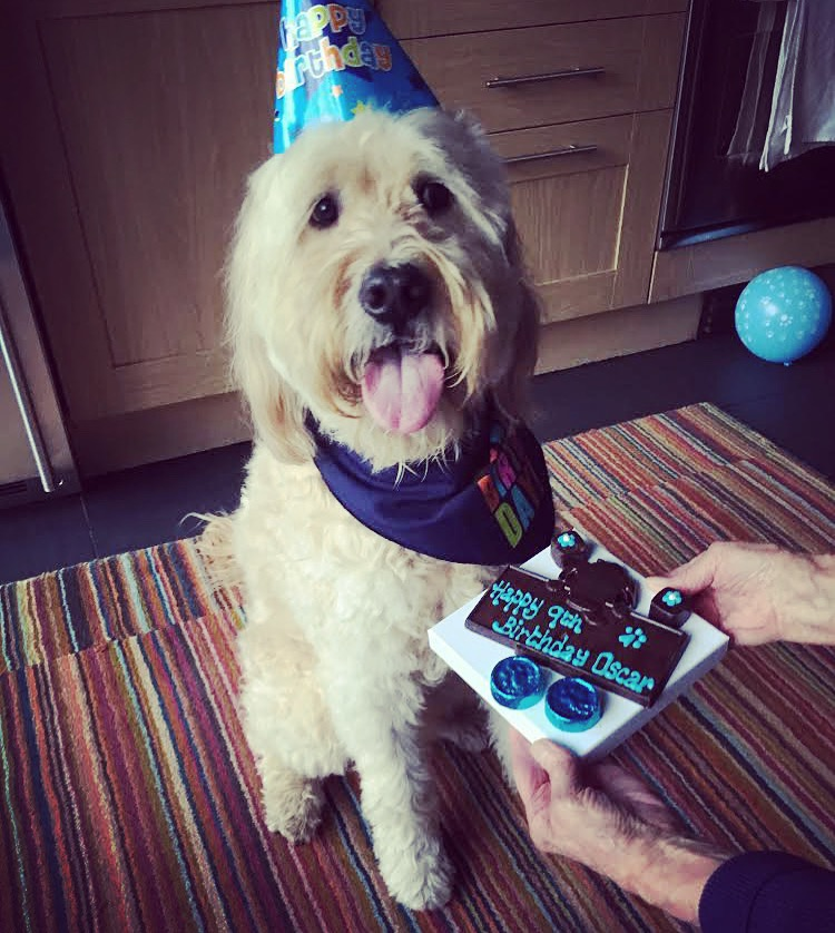Oscar's 9th Birthday