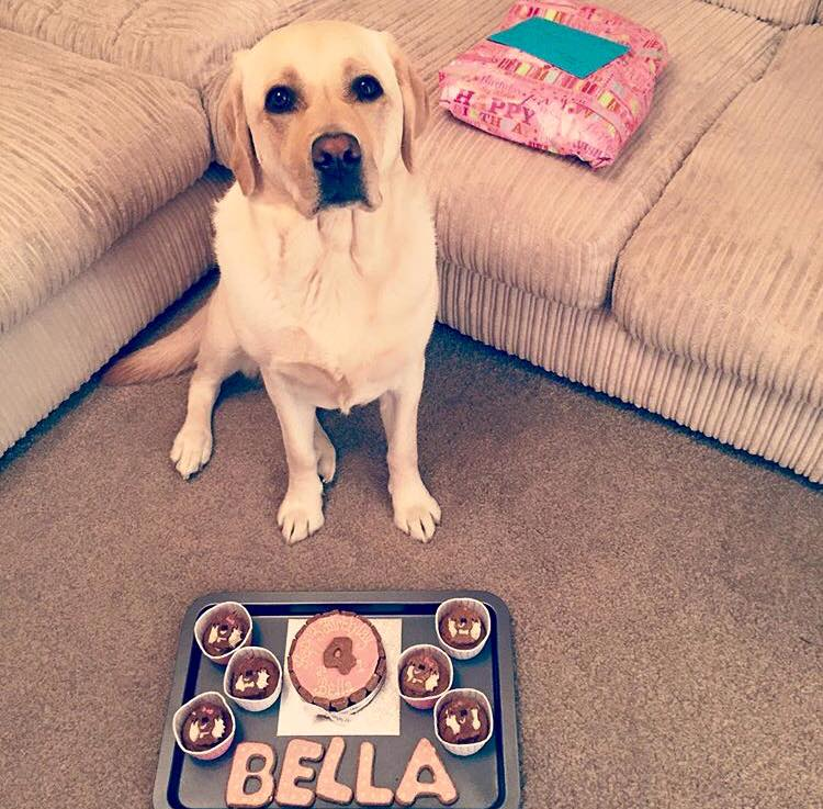 Bella's birthday celebration