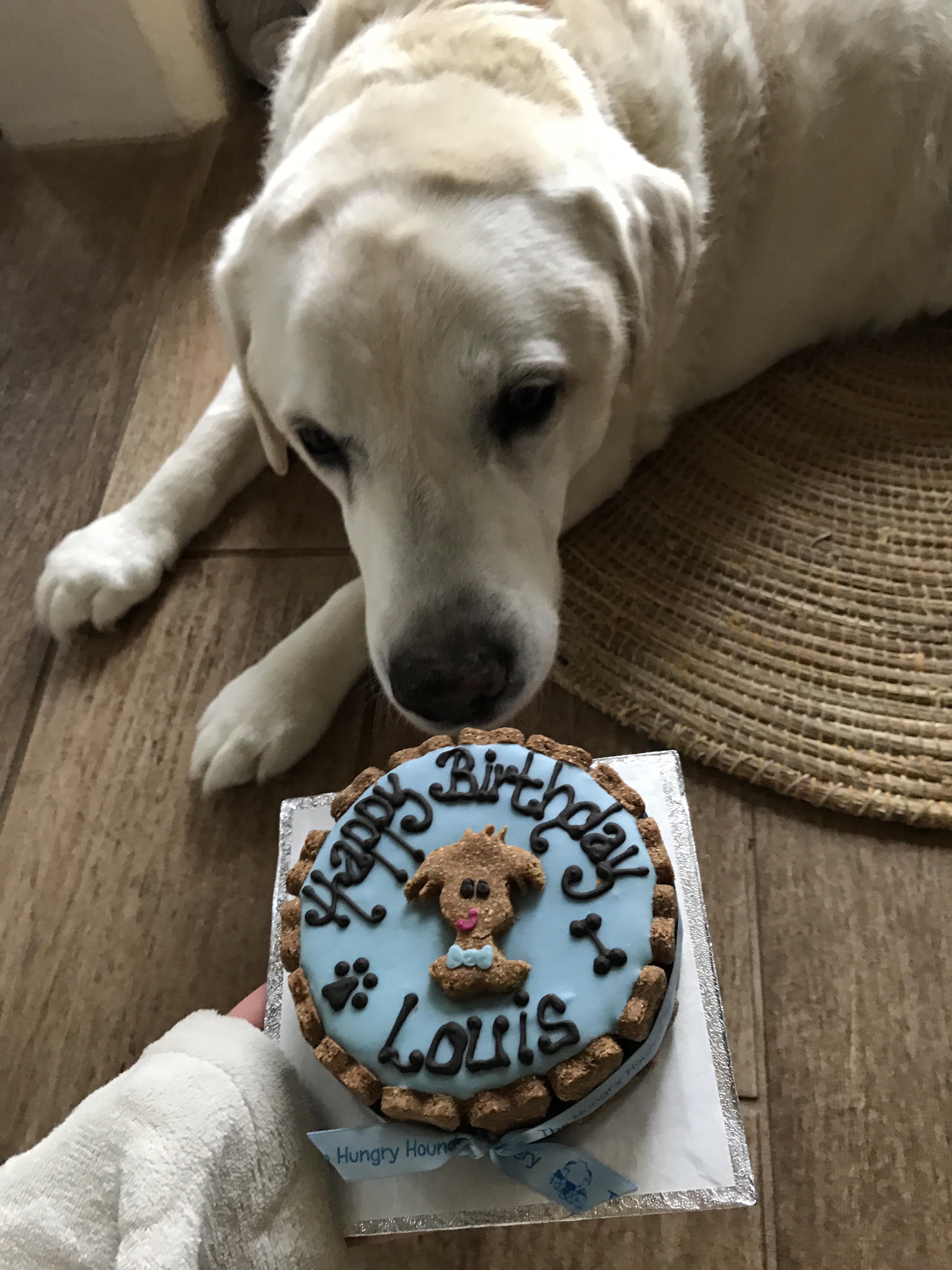 Louie loved his cake!