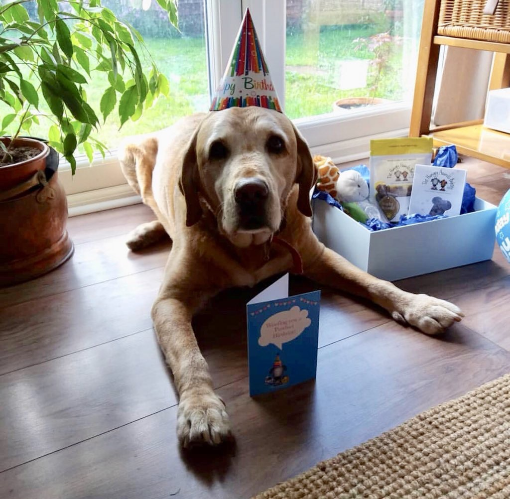 Birthday Boy!